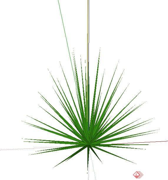 多棵2d和3d景观植物su模型素材