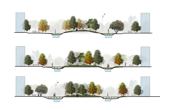 某公园道路植物景观设计psd图[原创]