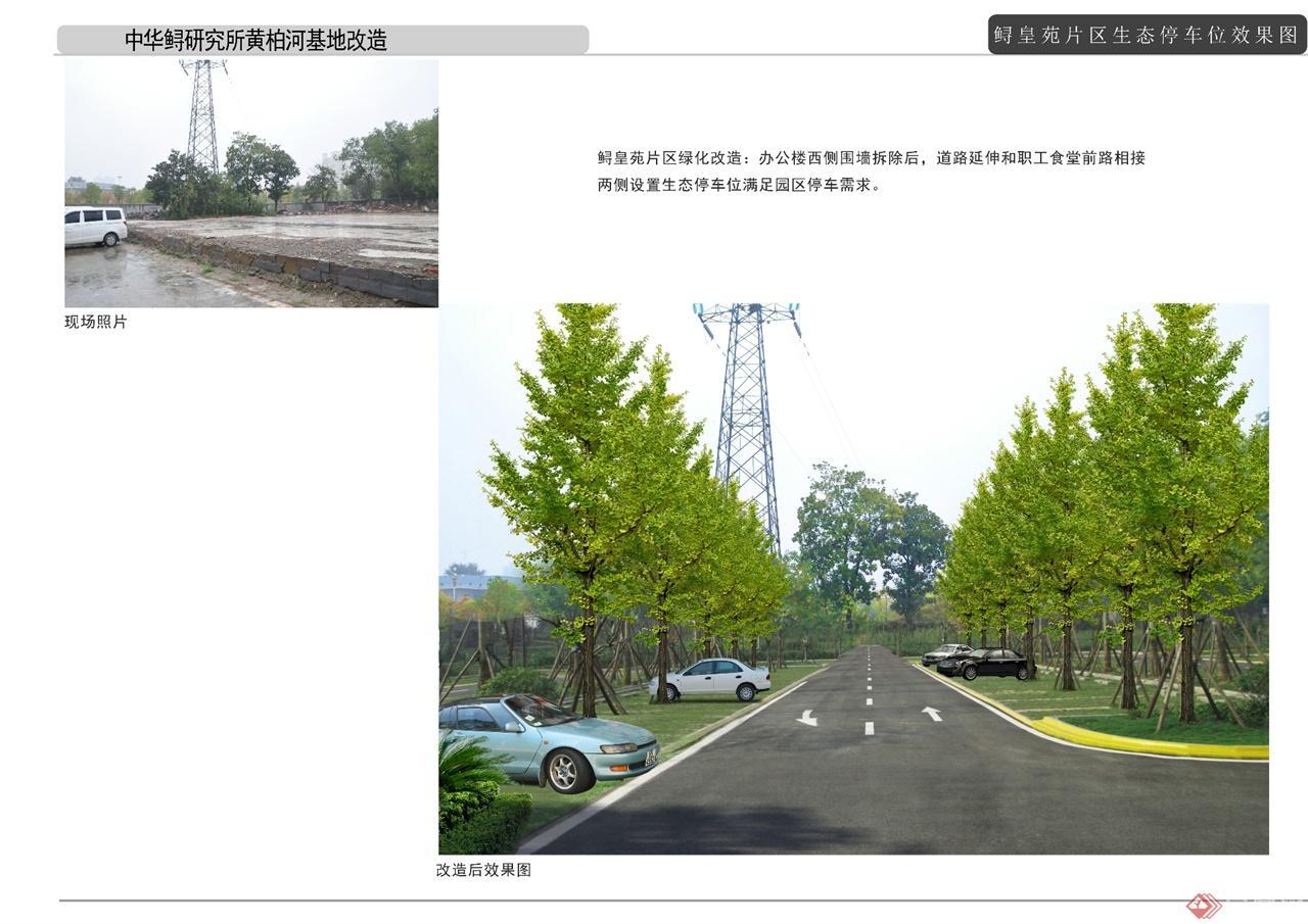 05生态停车位效果图图片