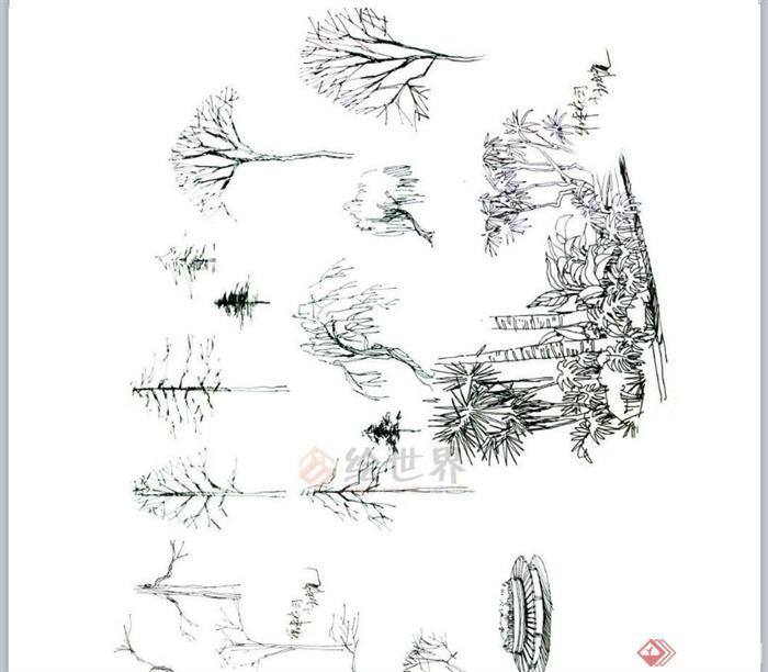 园林植物树木平面图的表示方法(画法)