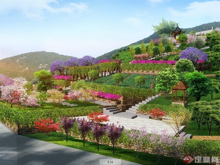 某别墅大型后花园景观设计效果图