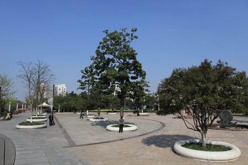 景觀樹池手繪圖