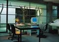 办公室,办公桌,树干