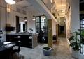 办公室,吊灯,办公桌椅,盆景