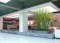 办公区,大厅,办公空间,树池,沙发