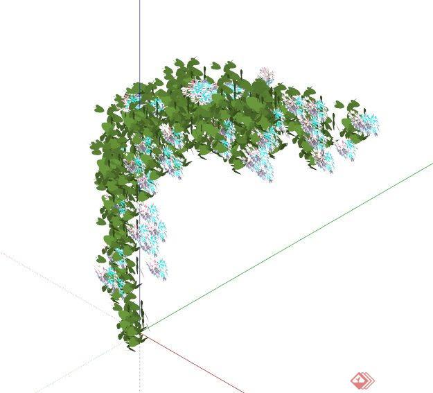 十种藤蔓爬墙植物的su模型素材(3)