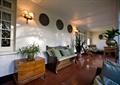 沙发,边柜,盆栽,椅子