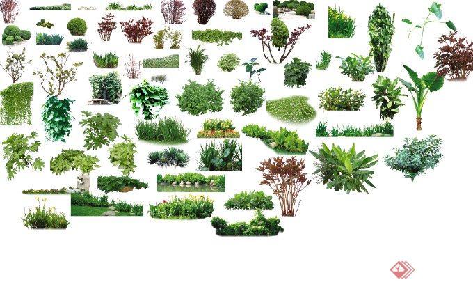 园林景观喷水池及绿化植物psd素材