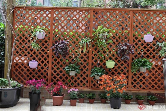 围栏,盆栽植物