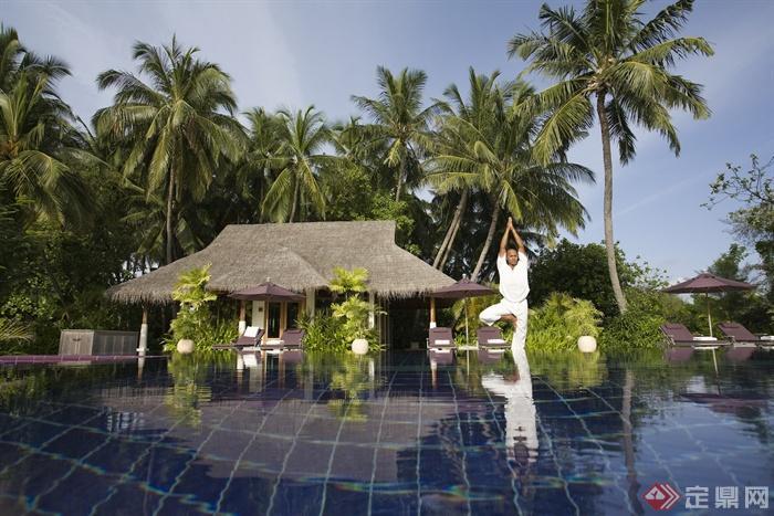 度假酒店-马尔代夫-茅草屋植物水景-设计师图库