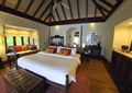 客房,床,沙发,窗子,门,背景墙,床头桌,桌子,植物