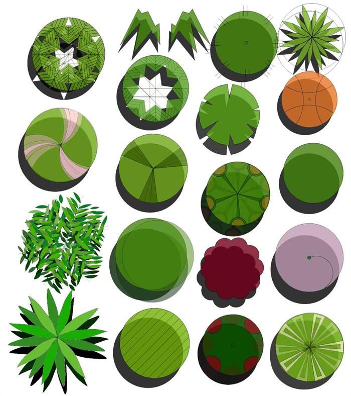 园林景观树木植物平面ps素材
