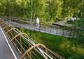 步行桥,景观桥,生态景观,桥