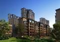 多层住宅,住宅楼,住宅景观,草坪,座椅