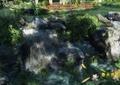 瀑布,水景,景石,住宅景观