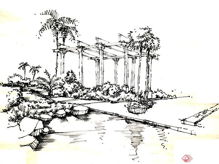 钢笔画园林素描景观习作-花架植物水景-设计师图库