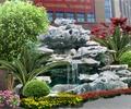 假山,水景,植物,花卉