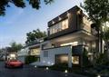 别墅,新农村,住宅建筑,道路
