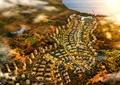 住宅区规划,住宅景观,小区规划,小区设计