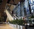 办公大厅,扶梯,盆栽