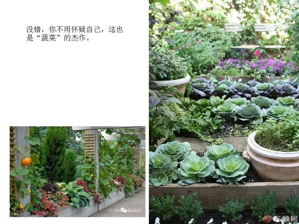 花墙 景观 墙 植物 960_720