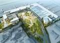 飞机场,植物,道路,飞机