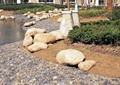 驳岸,鹅卵石铺装,植物