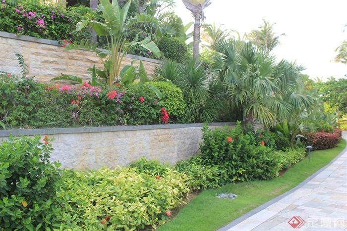 住宅围墙边景观设计图-花台植物草坪园路-设计师图库