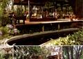 亭子,坐凳,植物,地面铺装,树池,沙发