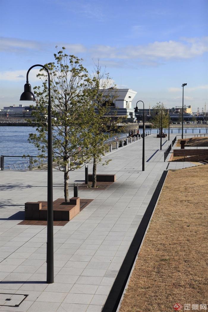 城市景观节点设计图-地面铺装树池坐凳路灯-设计师