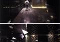 電梯間,走廊,形象墻,地面鋪裝
