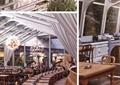 餐厅,餐桌椅,餐具,吊灯,植物,天花吊顶