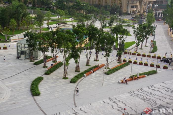 景观实景-广场坐凳-设计师图库