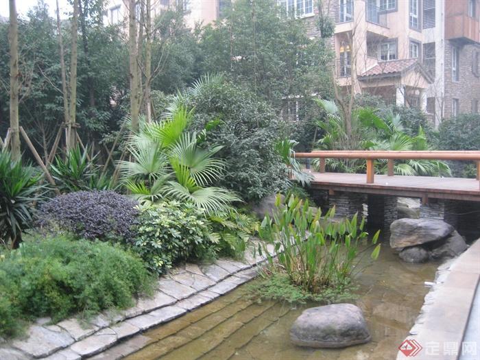 现代某住宅区景观设计图-水景景石驳岸桥植物-设计师