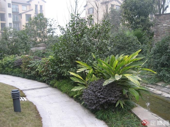 现代某住宅区景观设计图-园路植物庭院灯-设计师图库