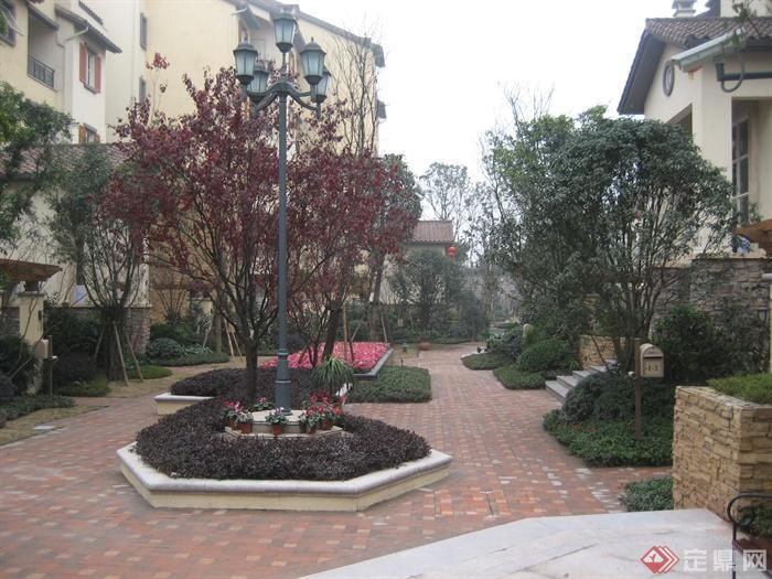 城市游园景观节点设计图-花池路灯地面铺装植物-设计