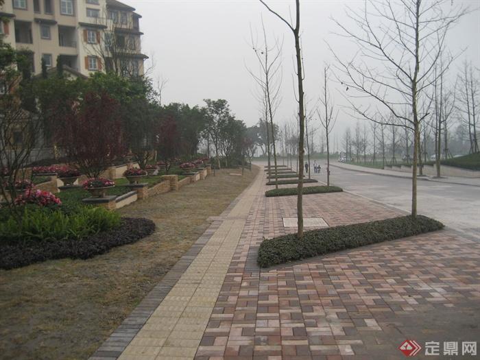 城市游园景观节点设计图-道路地面铺装树池植物-设计
