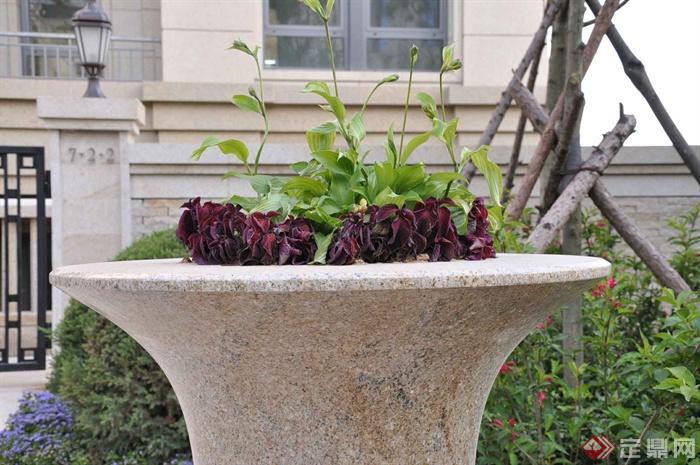 某两层别墅建筑设计图-花钵植物-设计师图库