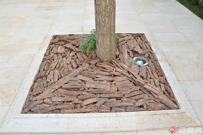 某两层别墅建筑设计图-树池地灯-设计师图库