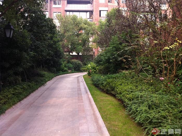 新古典风格小区景观实景图-园路铺装-设计师图库