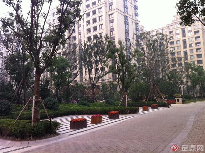 新古典风格小区景观实景图-住宅景观道路景观花池树池