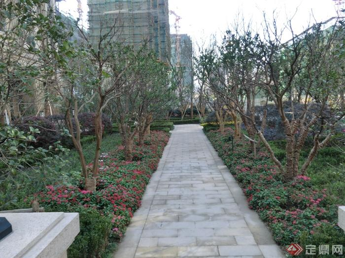 新古典风格小区景观实景图-园路铺装花池-设计师图库