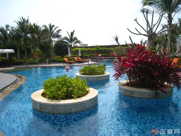 简欧风格小区景观-树池泳池水中树池-设计师图库