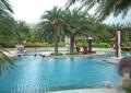 泳池,树池,雕塑喷泉,景观水池