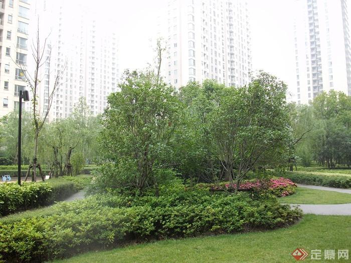 现代住宅景观规划设计图-灌木乔木路灯园路-设计师