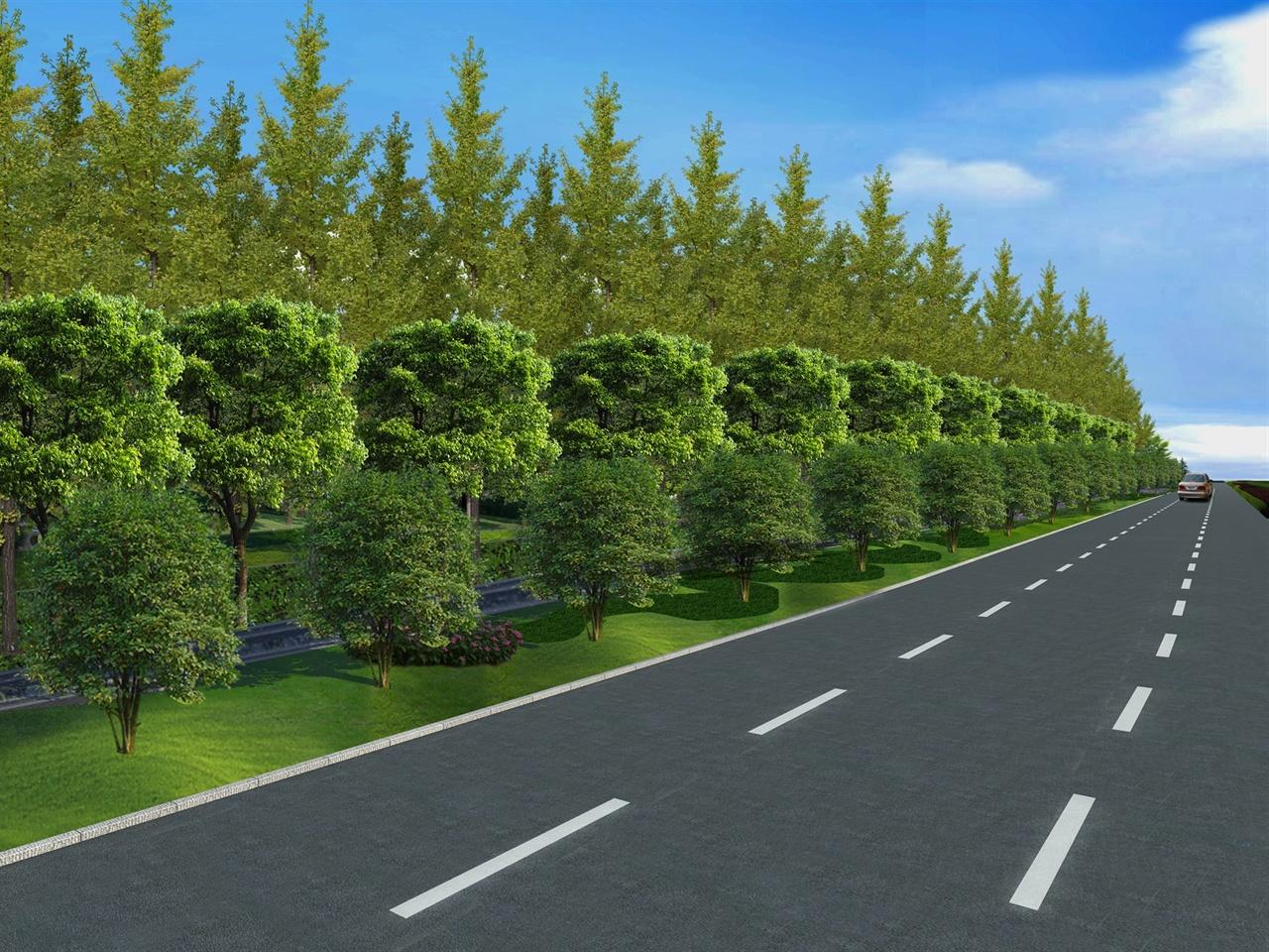 港化路公路边蝠绿化效果
