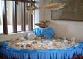 展廳,海洋小場景,鯊魚,海星