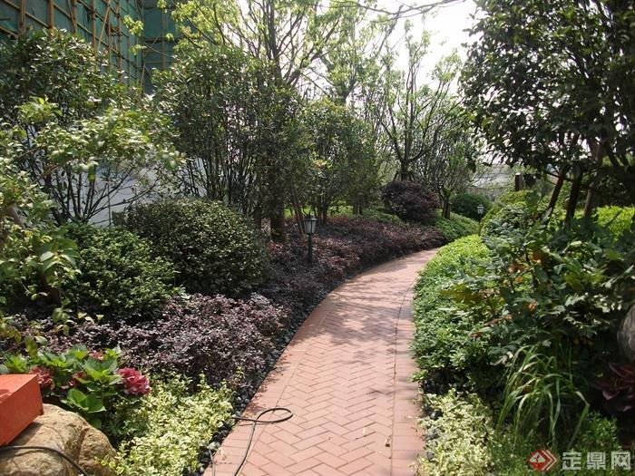 园林景观小径设计图-园路铺装植物庭院灯-设计师图库