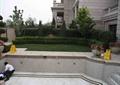 水池,水池施工,花缽,臺階