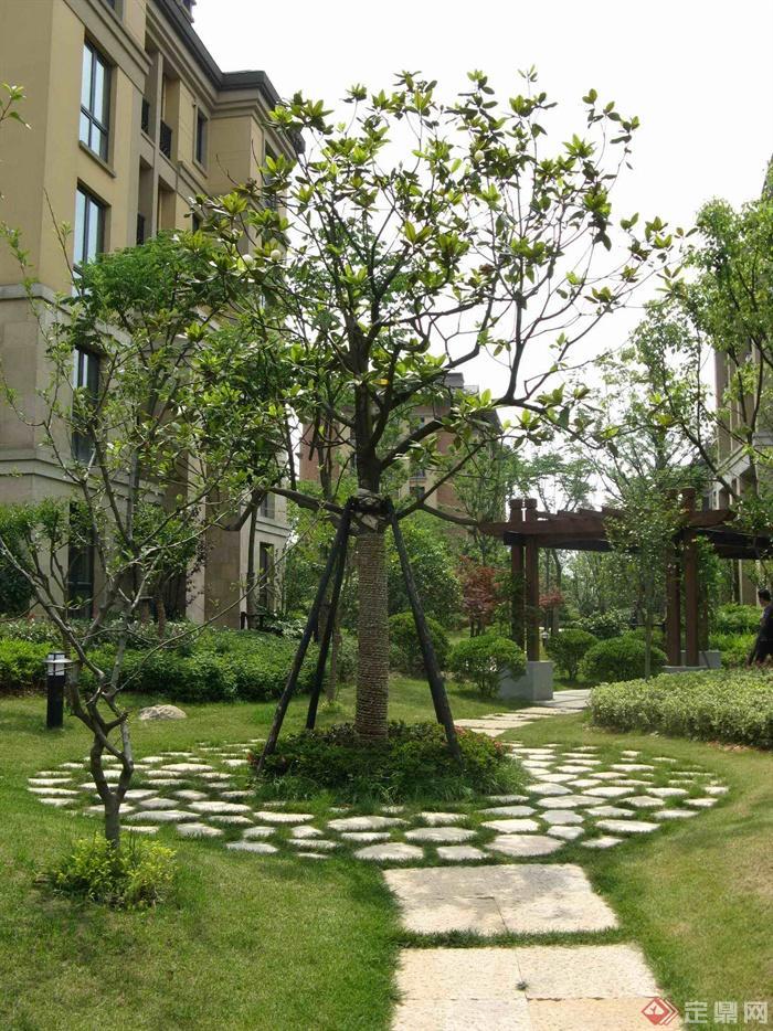 欧式小区住宅景观实景-汀步园路庭院灯住宅景观花架